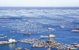 中船集团获10艘15000TEU超大型集装箱船建造合同