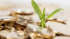 加快释放金融开放的制度红利